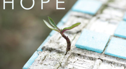 Hope is Confident